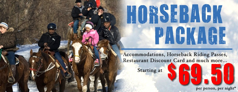 Winter Horseback Riding Ad Banner